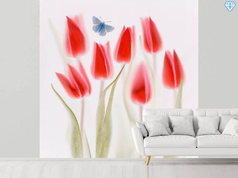 Photo Wallpaper Red Tulips