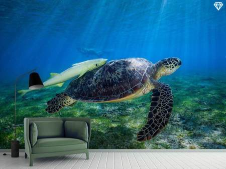Papier peint photo Sea Turtle