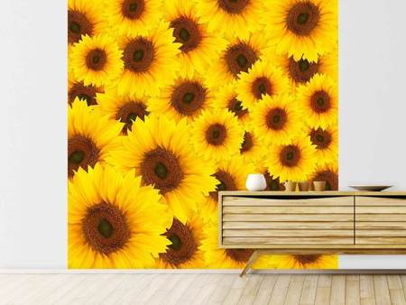 Photo Wallpaper A Bouquet Sunflower