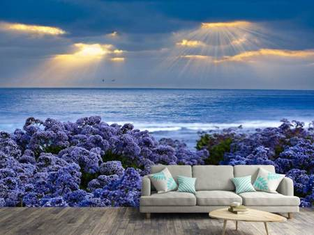 Photo Wallpaper Lavender And Sea