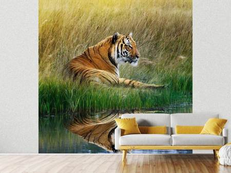 Photo Wallpaper The Tiger